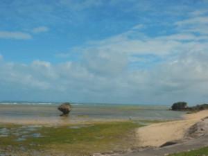 台風がさった沖縄