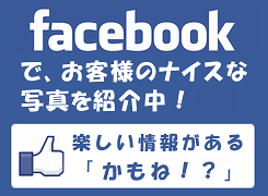 fb_kamone_banner